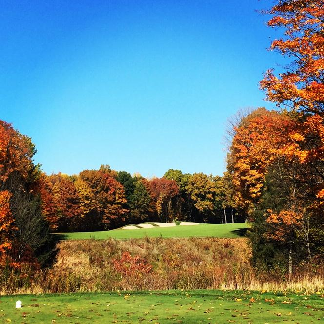 Top 10 Most Played Golf Courses in 2016The Range @ TheGrint com